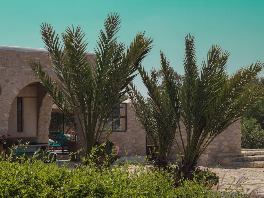 Essaouiravilla5